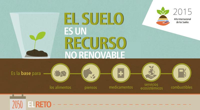 El suelo es un recurso no renovable suelos 2015 for Recurso clausula suelo