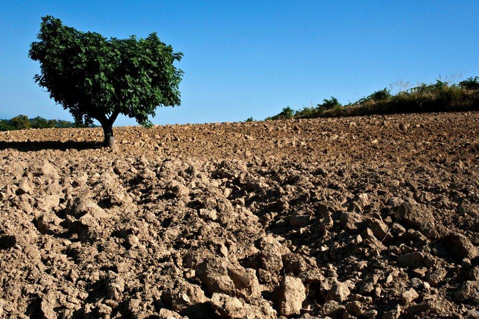 Degradaci n de los suelos de vocaci n forestal de siuna for Suelos de hormigon para jardin