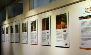 Los suelos y la biodiversidad forestal