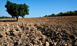 Degradación de los suelos de vocación forestal de Siuna. Suelos 2015